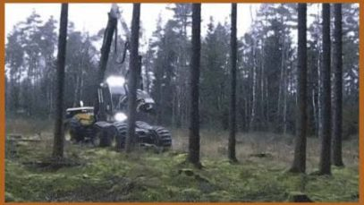 This logging machine takes only about 25 seconds to process a tree