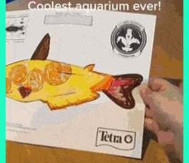 this aquarium takes kids drawings of fish and gives them life!
