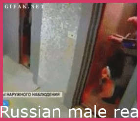 Russian man reacts quickly to save a dog from an elevator